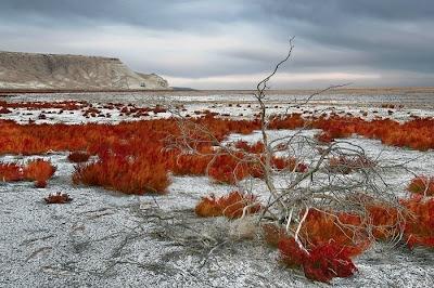 aral sea 02 Aral Sea, Laut Yang Mengering