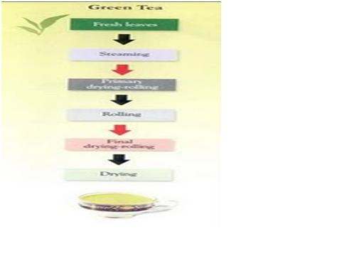 Pengolahan teh