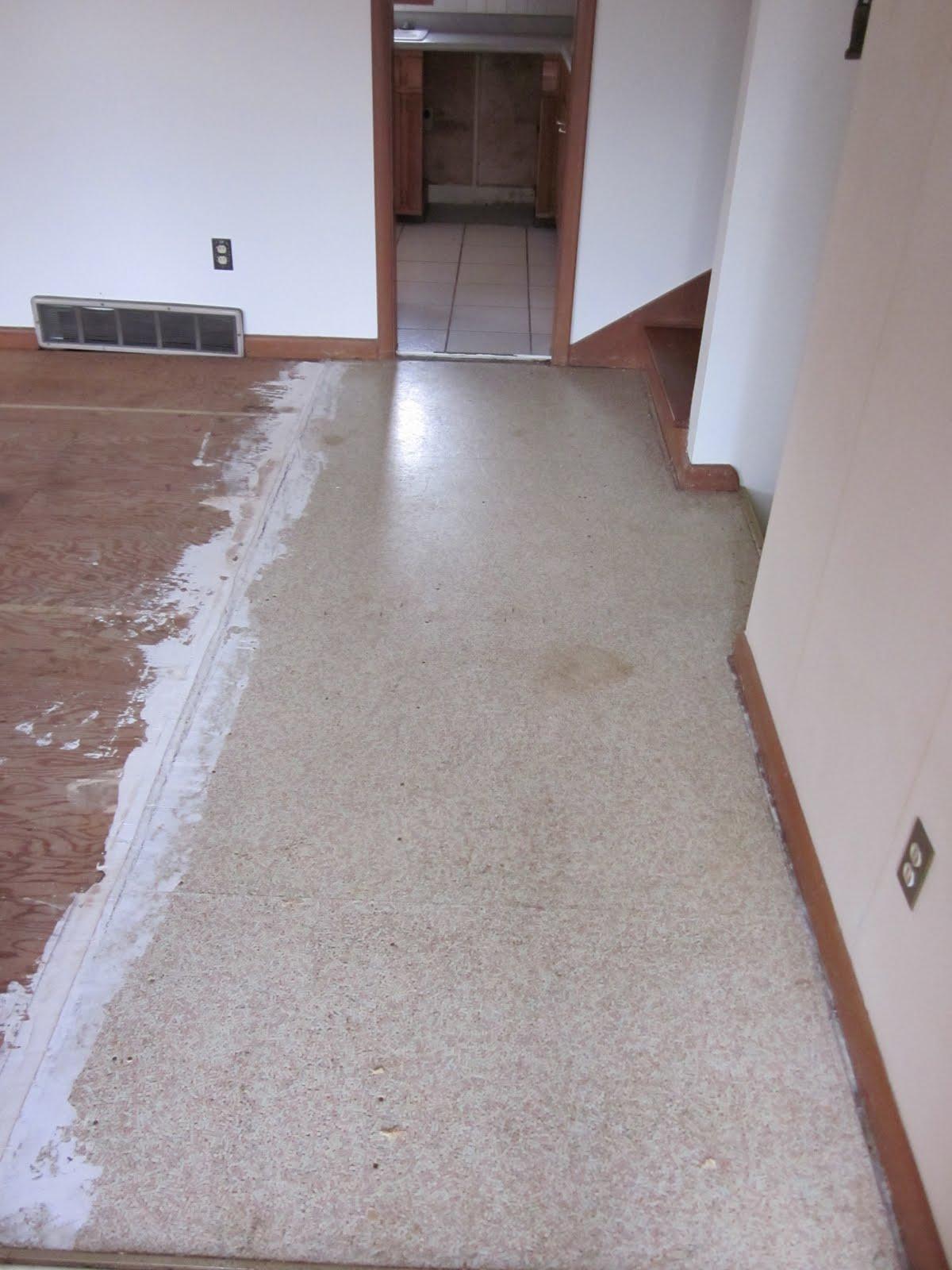 29 Split Entry Living Room Decorating Ideas Keep Home: Split-Level Adventures: Selecting Floor Tile For The