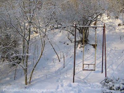 Lonely Swing in Winter
