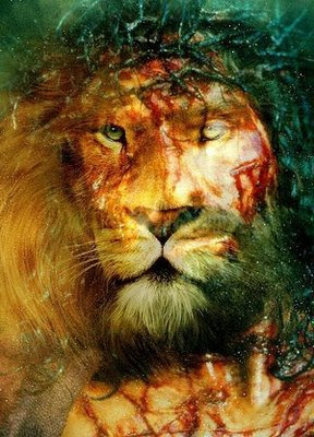 Lamb Of God Iphone Wallpaper Herdeiras De Si 227 O As Cr 244 Nicas De Narnia