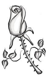 rose sketches pen sketch bamboo photoshop tablet