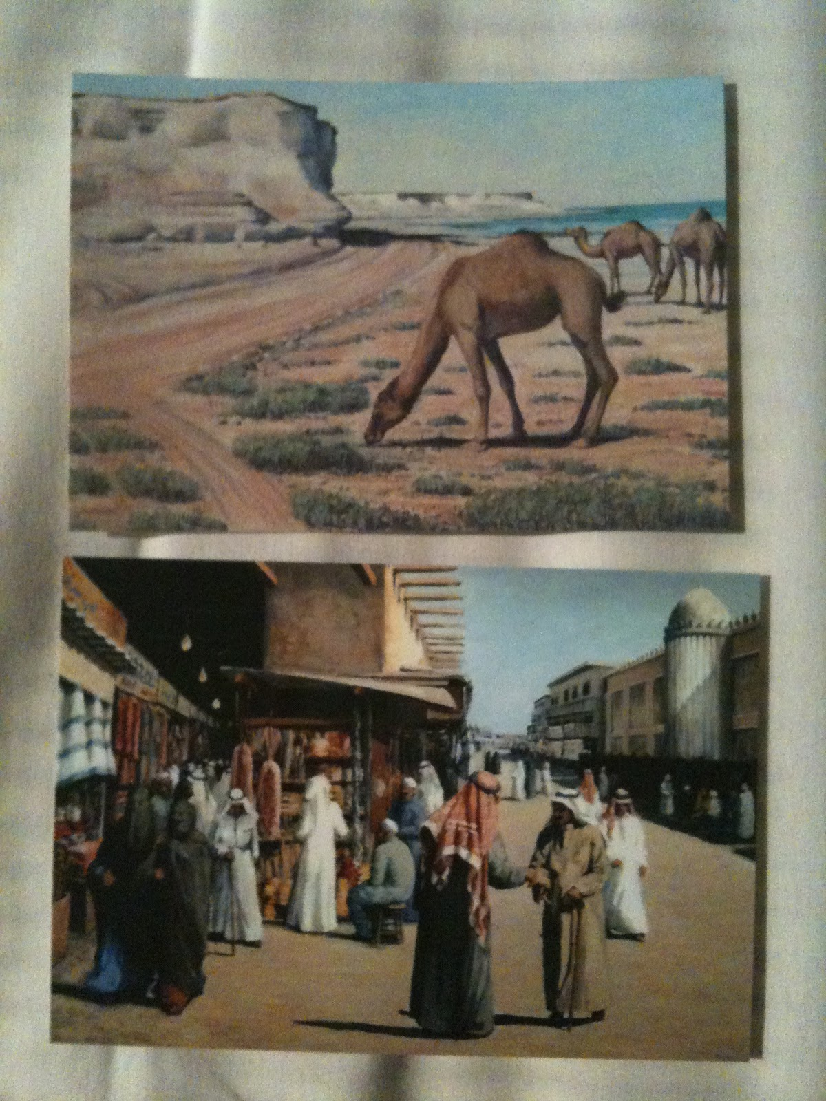A Little Oryx in Qatar: Where to Buy Postcards in Qatar