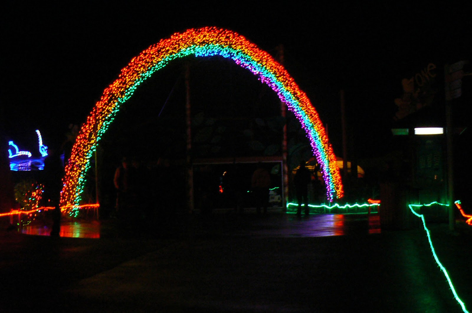 Lights Zoo Wa