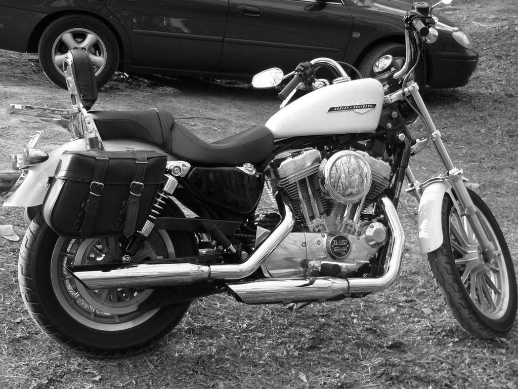 My Sportster Experience: 2005