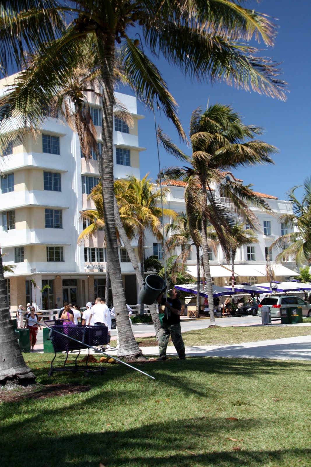 LIFE: Self-Guided Miami South Beach Art Deco Tour