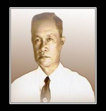 Medicinal plants of the philippines by eduardo quisumbing