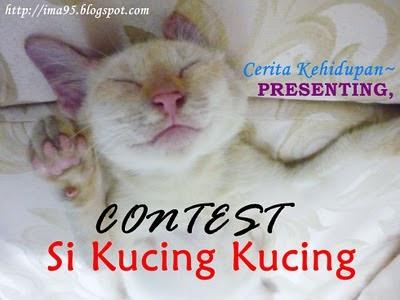 Contest Si Kucing Kucing Umi Mya Zara Raihana