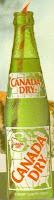 Canada Dry : RIP ( 1995-1999) : Why Marketing Plans failed ???? (1/2)