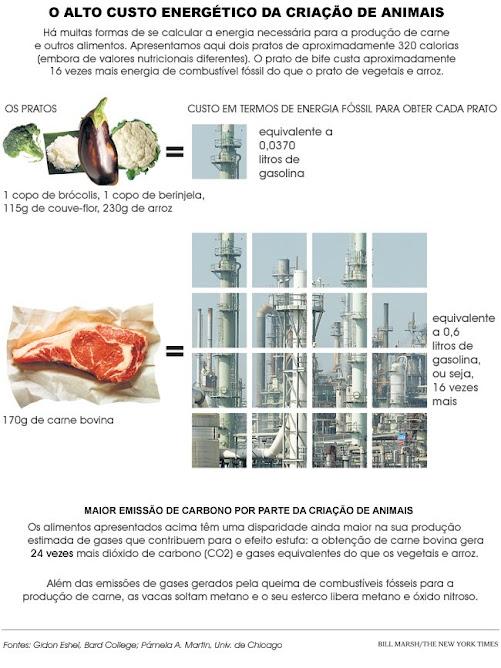 o Custo da Carne ( e de qualquer produção artificial de animais)