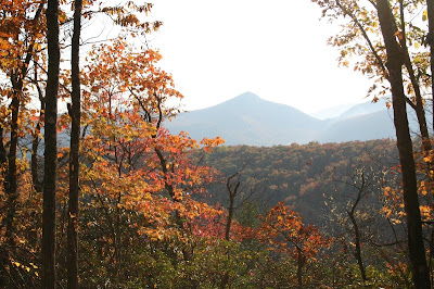 Sapphire Valley Nc Real Estate List Of Communities