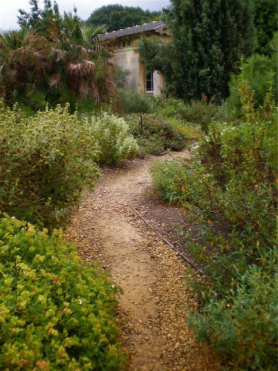 Urban Landscape Native Landscape The Mediterranean Garden At Kew