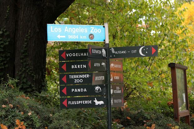 20 Zoo Signs Pictures And Ideas On Stem Education Caucus