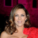 Hollywood Actress Elizabeth Hurley