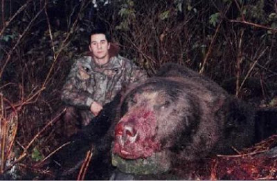 Great Big Mother Of A Bear!