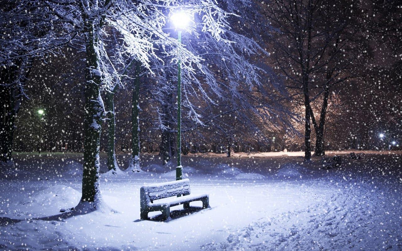 wallpaper winter night - photo #21