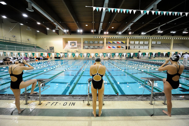 ohio swimming and diving state meet