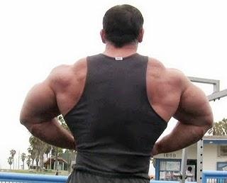 Fitness Body Builders Models: Worcester bodybuilding photos