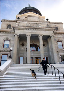 Miky Police Dog Montana