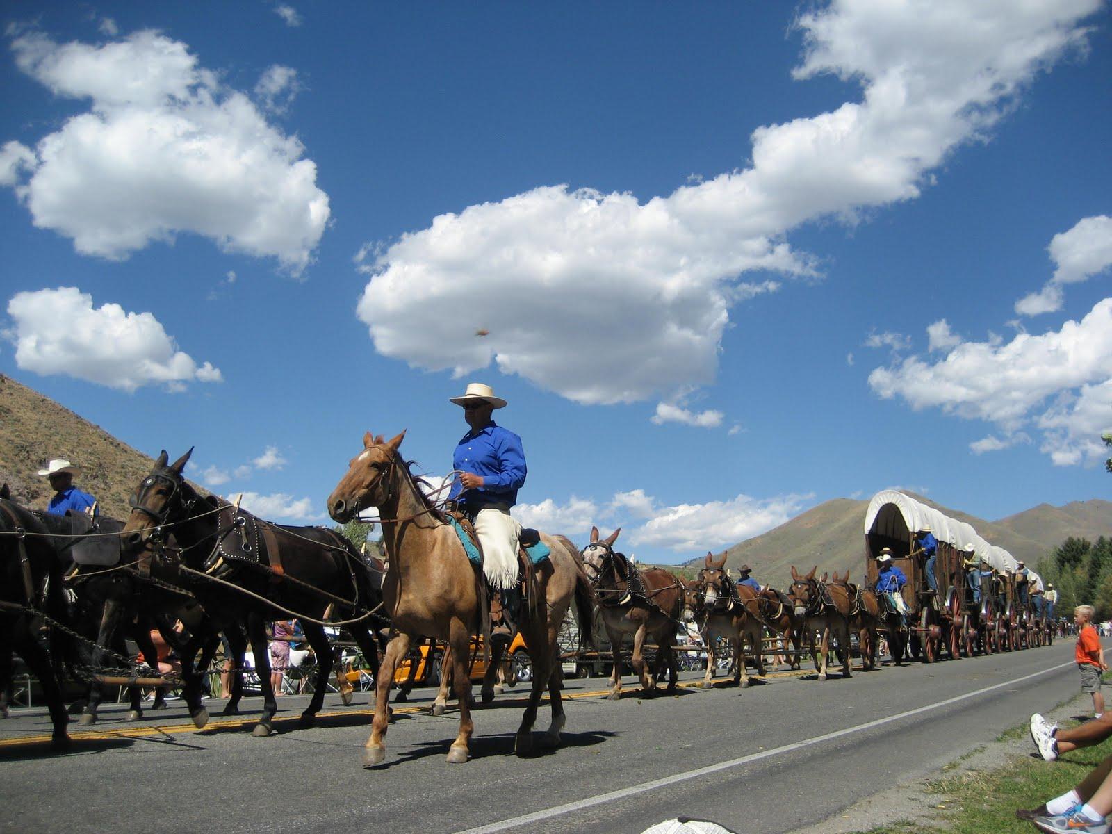 Rodeo Tales Amp Gypsy Trails Jerkline