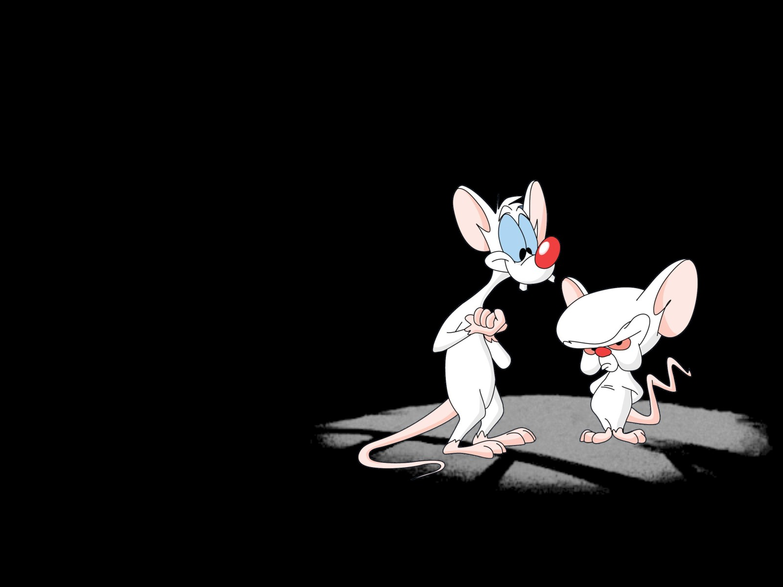 Pinky and the Brain Wallpapers | Wallpaperholic