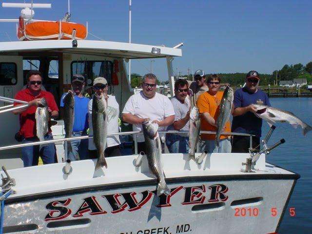 Fishing on Maryland's Chesapeake Bay with Sawyer Charters: Maryland
