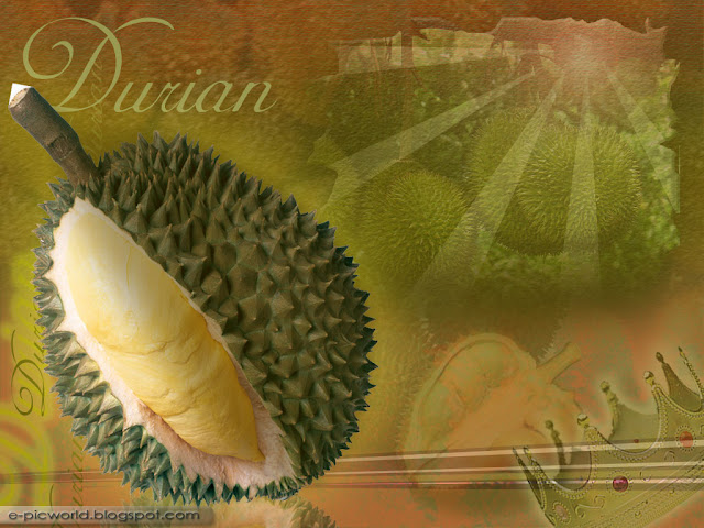 durian fruit wallpaper