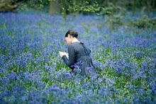 I want to walk in bluebells, the way some people walk in Memphis