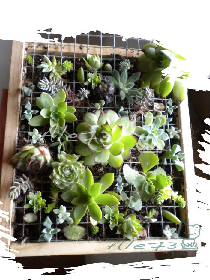 Il giardino degli aromi quadri da appendere for Quadri da appendere