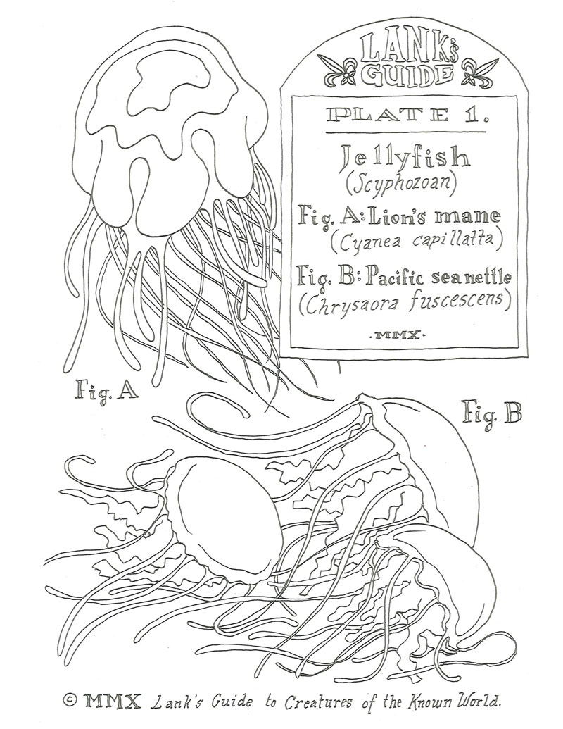 J Is For Jelly Bean Coloring Pages Coloring Pages