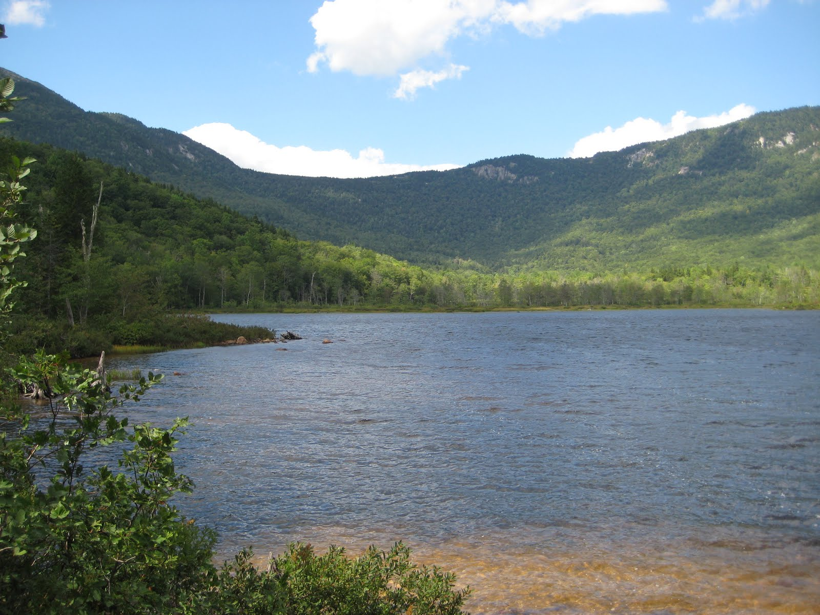 Hike Your Own Hike: Wild River Wilderness Area, New Hampshire