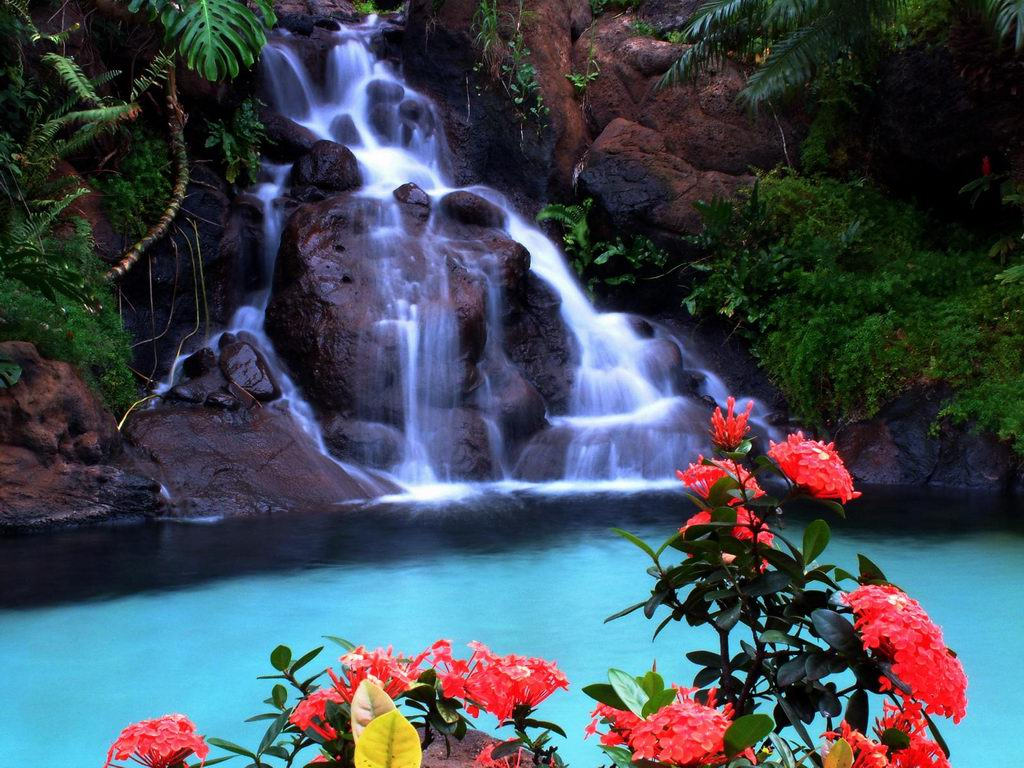 Beautiful Tropical Waterfalls Quotes. QuotesGram