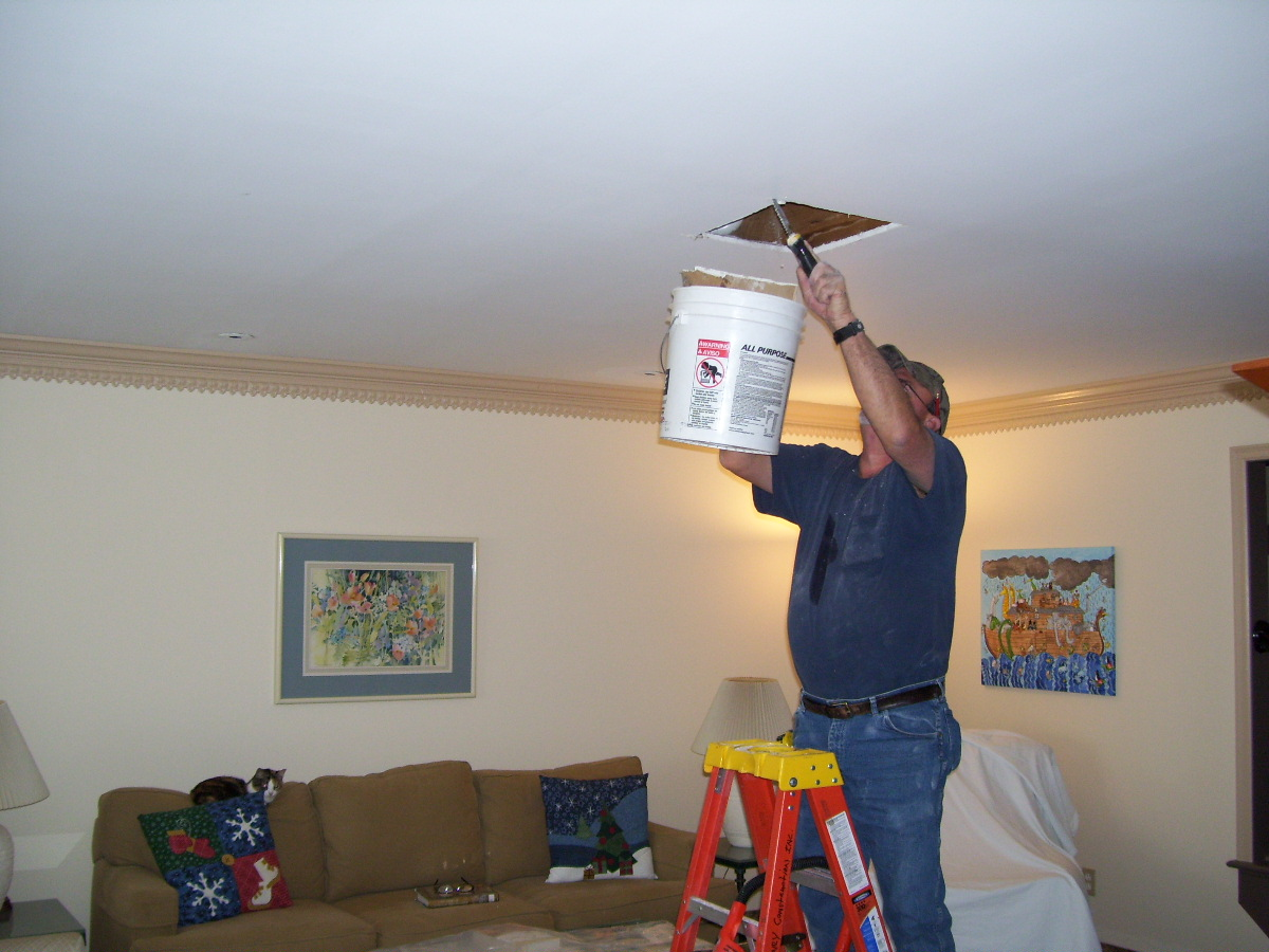 Collecting My Thoughts Ceiling Repair unexpected holiday expense