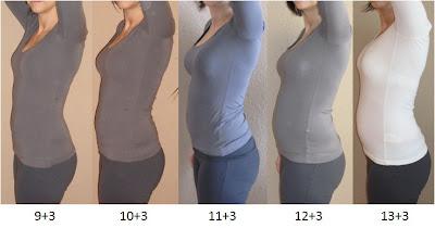 Ssw 14 Gewichtszunahme