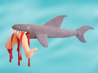 gambar hiu