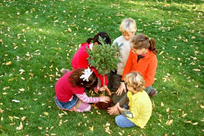 NAMC montessori classroom cultural activities turkey independence day egemenlik bayrami planting a tree
