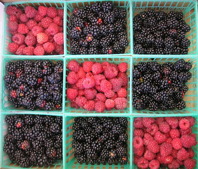 http://2.bp.blogspot.com/_4Ch_01hMrc8/SLz7S9VYGwI/AAAAAAAACww/DzTEV91tHlY/s400/701px-Tic-tac-toe_berries.jpg