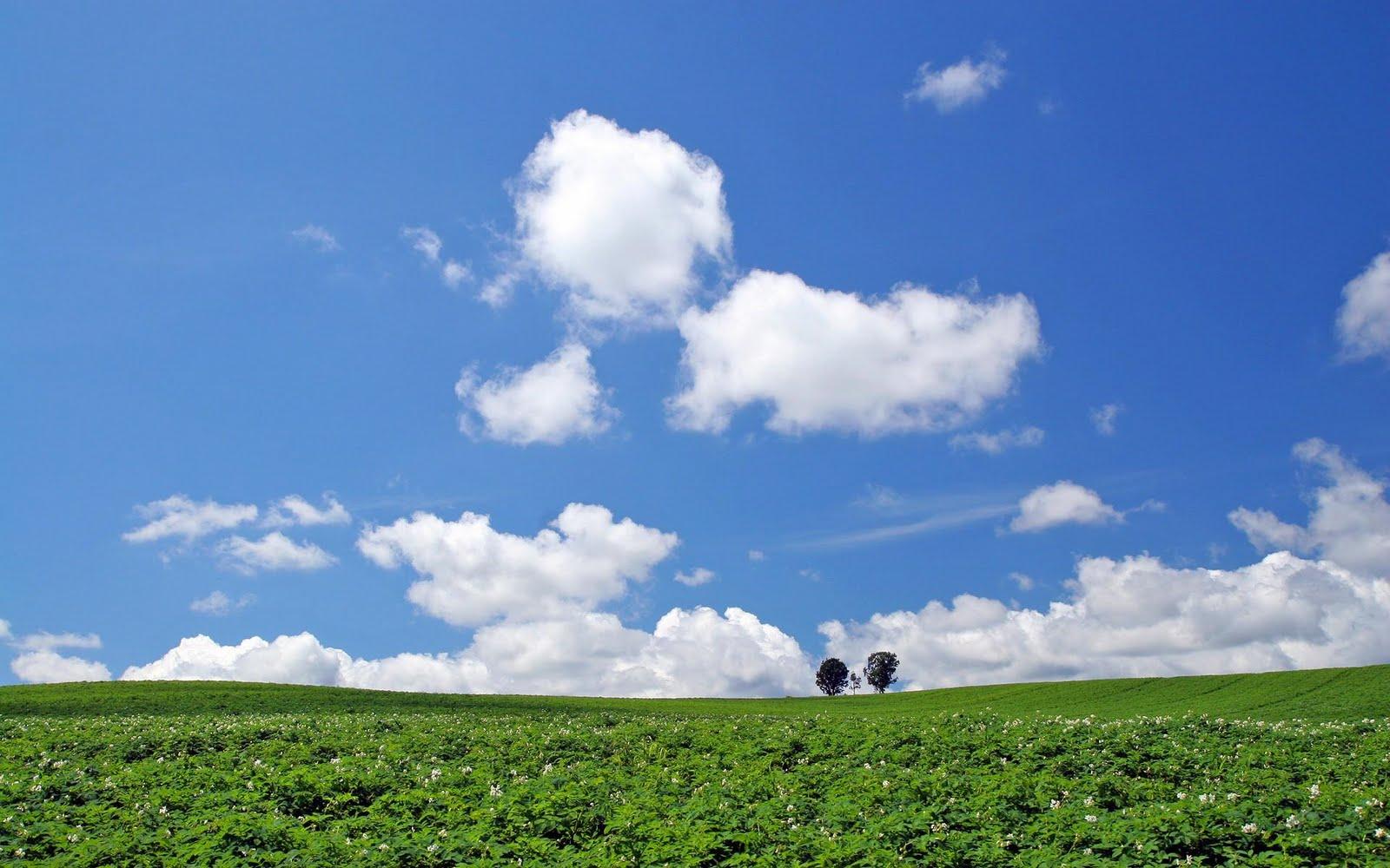 japan hokkaido landscape image - photo #5