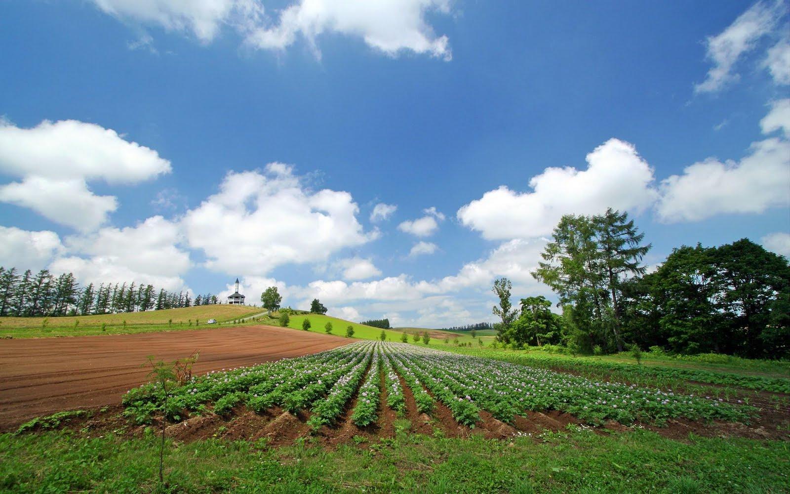 japan hokkaido landscape image - photo #11