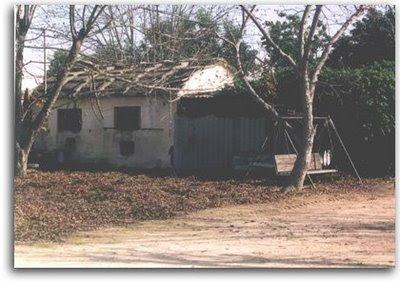 מבנה הרפת במשק של משפחת שניצר