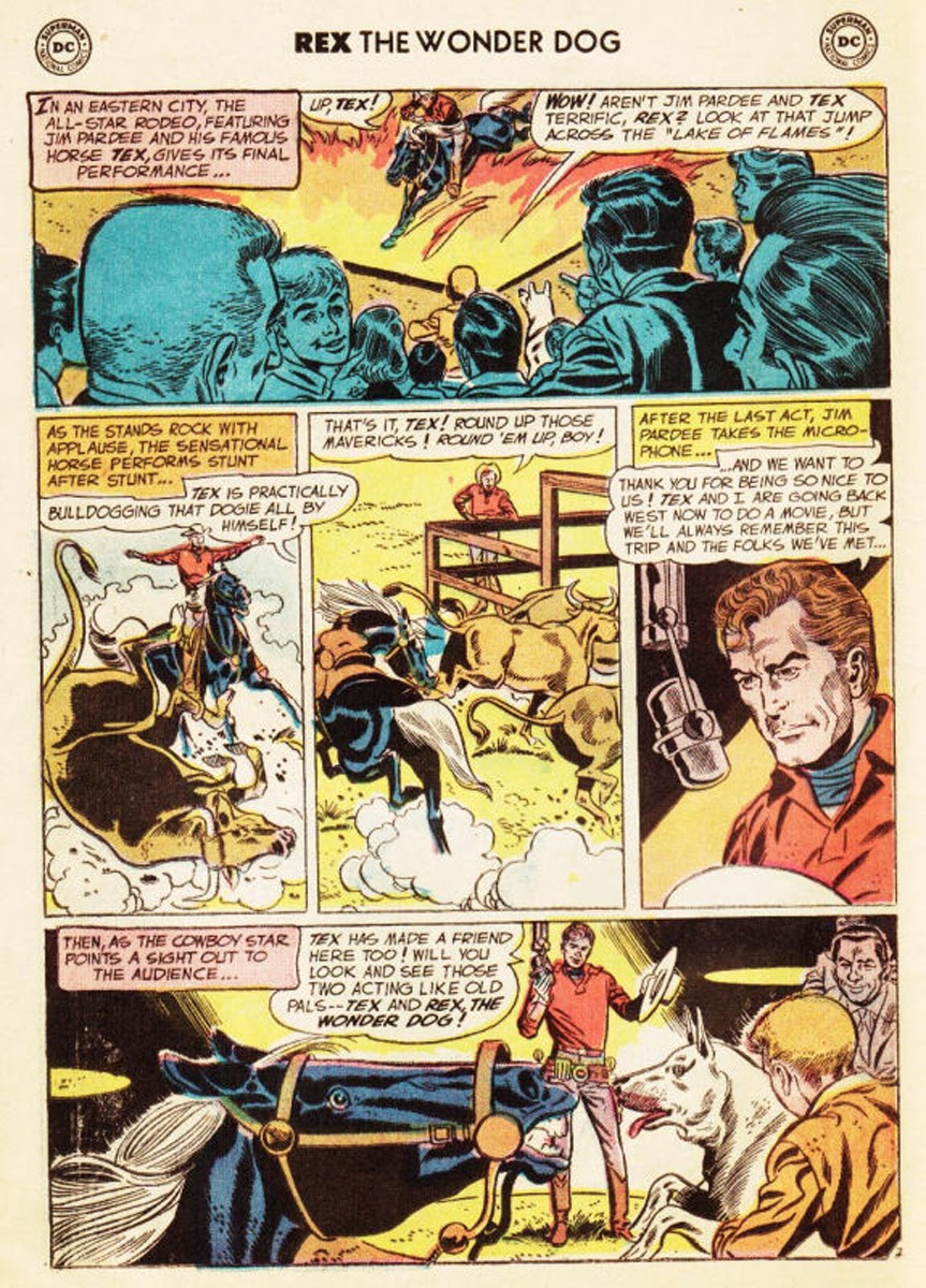 The Adventures of Rex the Wonder Dog issue 35 - Page 19