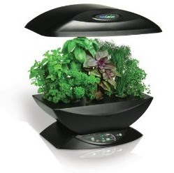 Indoor Herb Garden by AeroGrow