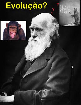 http://2.bp.blogspot.com/_4jCJsRzxVo0/TE9Mn2b5p9I/AAAAAAAAEuI/6tCKCXDTtR4/s1600/Darwin+e+os+Macacos+evolu%C3%A7%C3%A3o+duvida+2.jpg