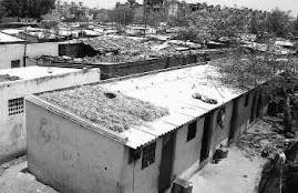 Ban Asbestos India