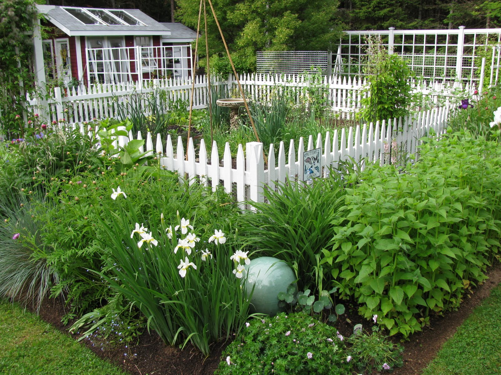 Goedkope Tuinafscheiding Gardeningbren In Nova Scotia The Picket Fence Is Starting