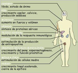 Beneficios de la masturbacion - 3 1