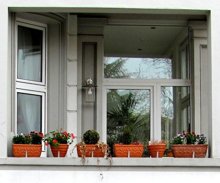 garten anders der balkon im zeitigen fr hjahr pflanzen f r mitte m rz bis mai. Black Bedroom Furniture Sets. Home Design Ideas