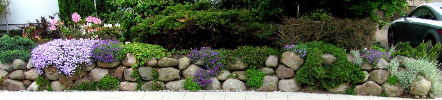 gartenarbeit ideen findlinge f r eine steinmauer natursteinmauer und steingarten kombiniert. Black Bedroom Furniture Sets. Home Design Ideas