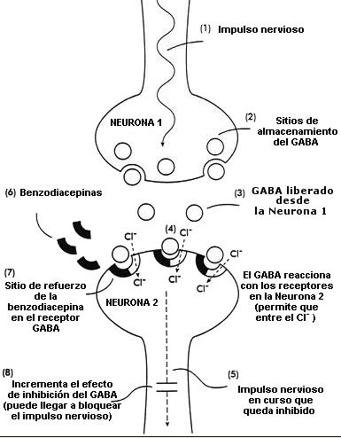 Manual de Anestesiología: Mecanismos de acción de las