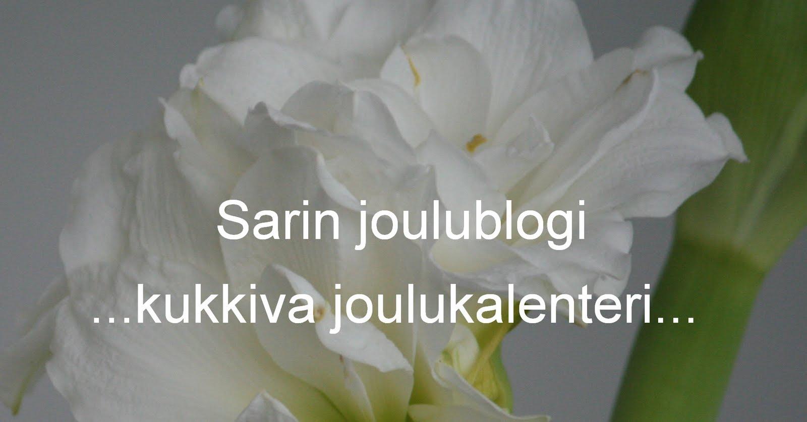 Sarin puutarhat: Kukkiva joulukalenteri Sarin joulublogissa